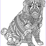 Dog Adult Coloring Book Best Of Gallery 627 Best Images About Adult Colouring Cats Dogs