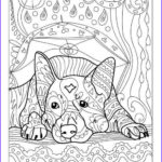 Dog Adult Coloring Book Elegant Collection Pin By Denise Morrison On Coloring Pages