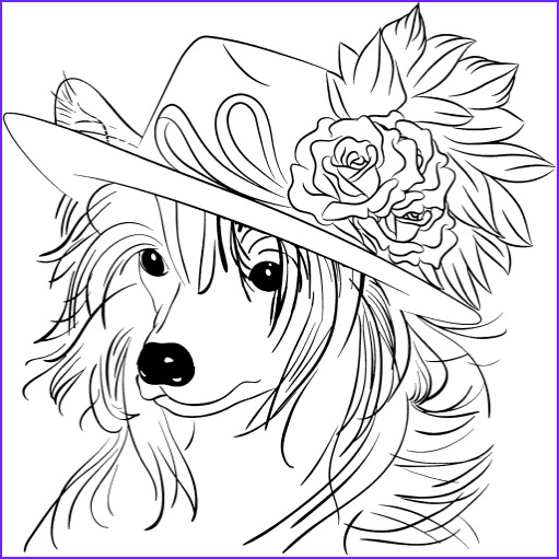 best dog coloring books