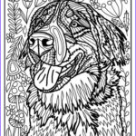 Dog Adult Coloring Book Inspirational Photos 431 Best Images About Cats Dogs Coloring Pages For