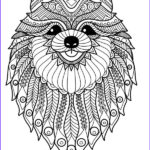 Dog Adult Coloring Book Luxury Gallery Doodle Dogs Coloring Books For Grownups Featuring Over 30