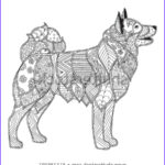 Dog Adult Coloring Book Luxury Photography Shiba Inu Coloring Page Stock Illustration