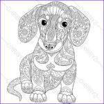 Dog Adult Coloring Book Luxury Photos Adult Coloring Page Dachshund Puppy Zentangle Doodle