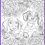 Dog Adult Coloring Book Luxury Photos De Stress With Dogs Downloadable 10 Page Coloring Book