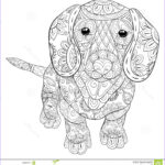 Dog Adult Coloring Book Luxury Stock Adult Coloring Page A Cute Isolated Dog For Relaxing Zen