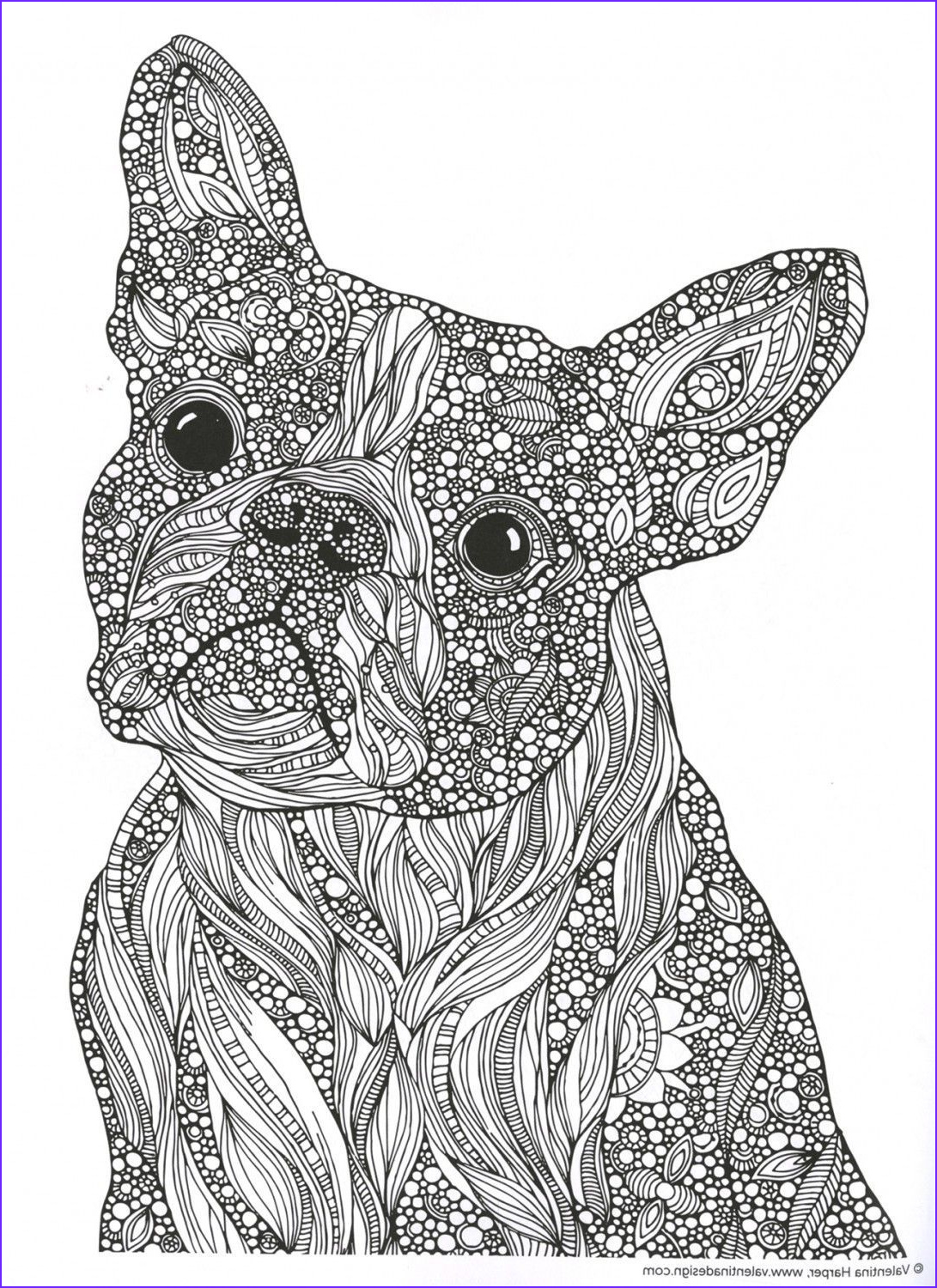 Dog Adult Coloring Book New Images Creative Coloring Animals Adult Coloring and Activity Book