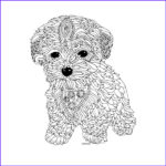 Dog Adult Coloring Book Unique Collection 17 Best Images About Coloring Pages Blanks On Pinterest