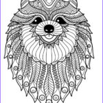 Dog Adult Coloring Book Unique Image Doodle Dog Coloring Books And Doodles On Pinterest