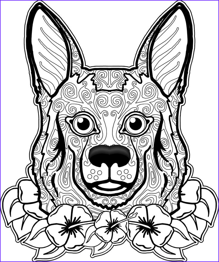 coloring pages dogs wolves foxes