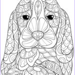 Dog Coloring Book For Adults Beautiful Image 453 Best Images About Cats Dogs Coloring Pages For