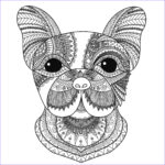 Dog Coloring Book For Adults Cool Gallery Dog Head Bimdeedee Dogs Adult Coloring Pages