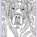 Dog Coloring Book For Adults Elegant Photography 1407 Best Free Printables Images On Pinterest