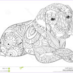 Dog Coloring Book For Adults Elegant Photos Adult Coloring Page A Cute Dog For Relaxing Zen Art Style
