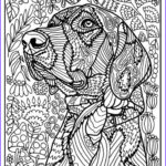 Dog Coloring Book For Adults New Photos 431 Best Images About Cats Dogs Coloring Pages For
