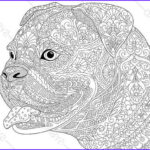 Dog Coloring Book For Adults New Photos Bulldog Boxer Dog Coloring Page Adult By
