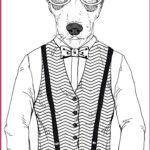 Dog Coloring Book For Adults New Photos Cat Coloring Book For Adults Google Search