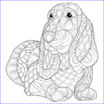 Dog Coloring Book For Adults New Stock Adult Coloring Page Beagle Dog Stock Vector Illustration