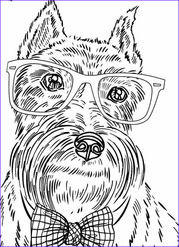 Dog Coloring Book for Adults Unique Photos 8 Best Dog Coloring Pages for Adults Images On Pinterest