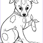Doggie Coloring Pages Beautiful Image Dog Coloring Pages