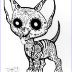 Dogs Coloring Pages For Adults Cool Collection Sugar Skull Chihuahua Dog Sugar Skull