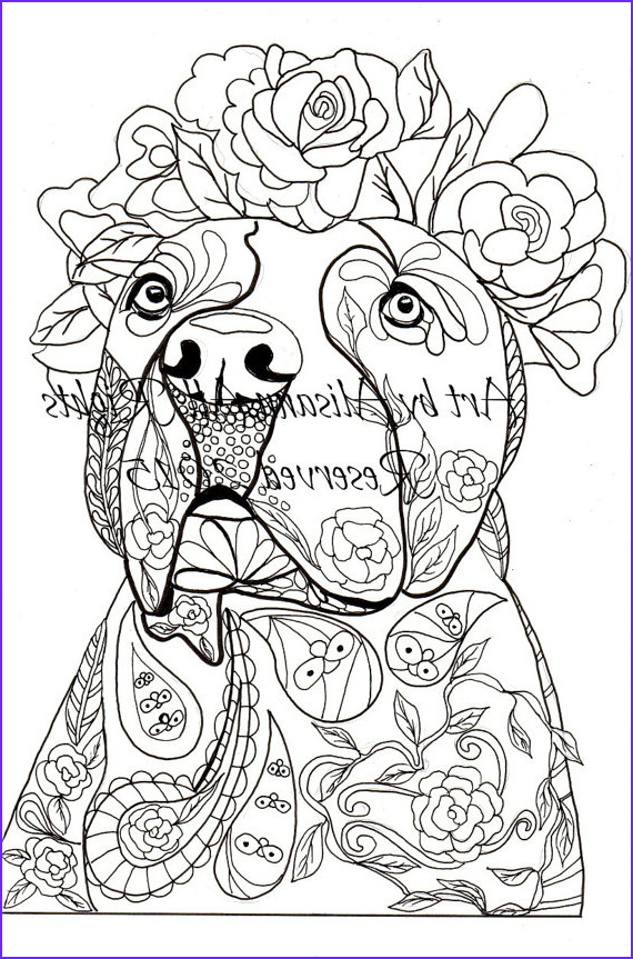 Dogs Coloring Pages for Adults Cool Image Love Pitbulls Digital Download Dog Art