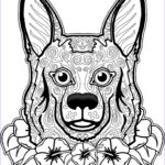Dogs Coloring Pages For Adults Inspirational Photography Dog Coloring Page Dog Coloring Pages Free Coloring Page