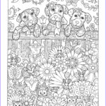 Dogs Coloring Pages For Adults Inspirational Photography Playful Puppies — Marjorie Sarnat Design & Illustration