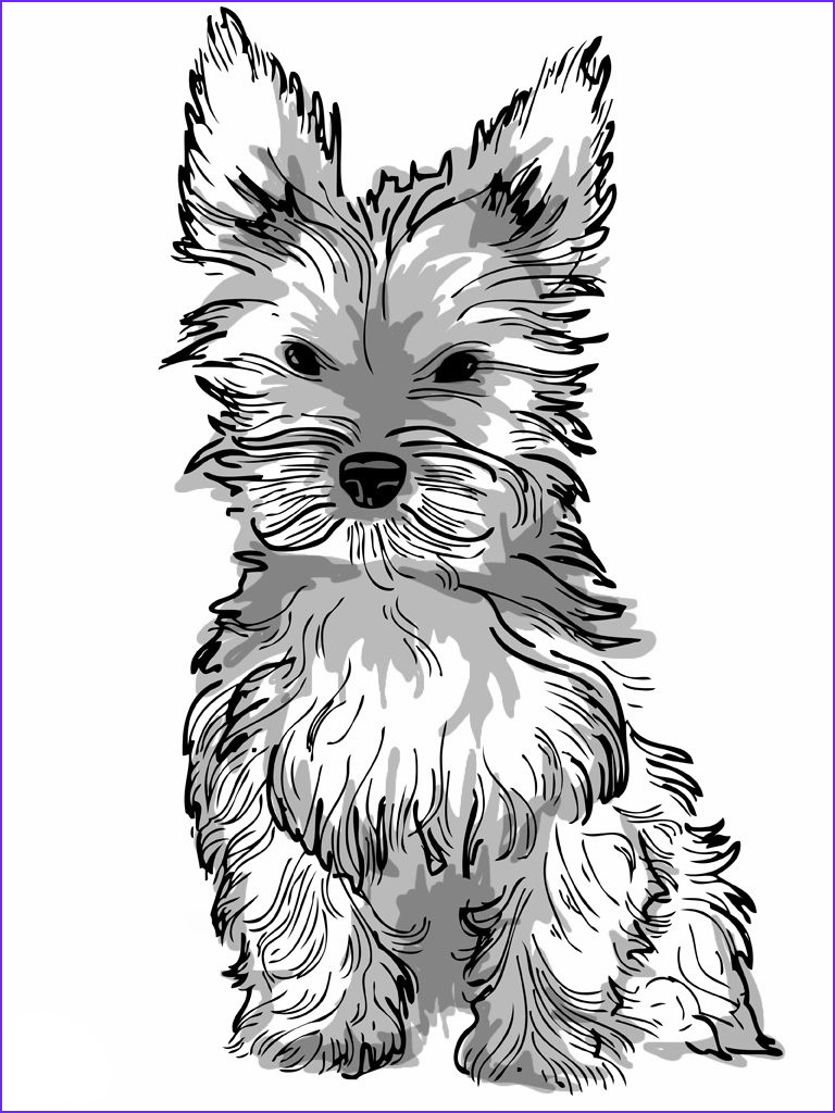 dog coloring pages for adults