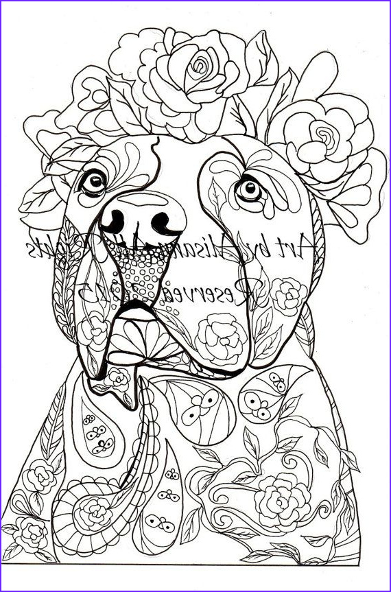 Dogs Coloring Pages for Adults Unique Photos Labradors Labrador Retriever and Applique Designs On