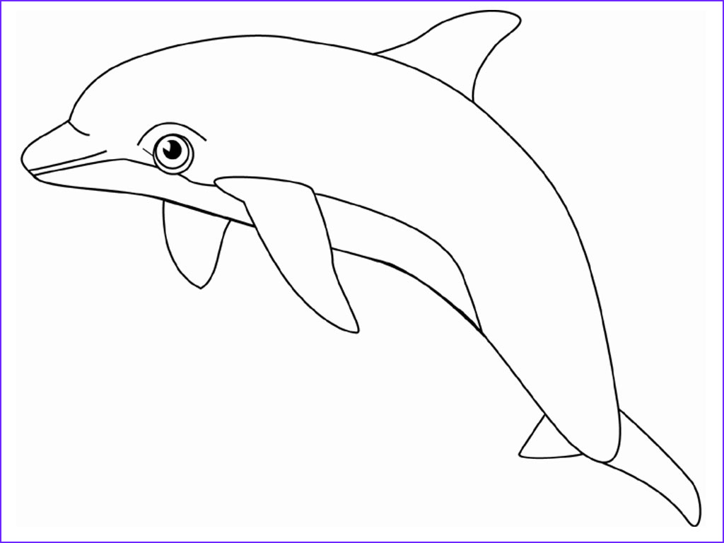 Dolphin Coloring Book Beautiful Collection Free Printable Dolphin Coloring Pages for Kids
