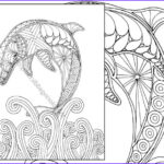 Dolphin Coloring Book Best Of Photos Dolphin Coloring Page Adult Coloring Sheet Nautical