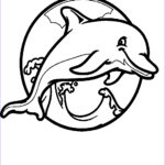 Dolphin Coloring Book Inspirational Image Miami Dolphins Drawing At Getdrawings