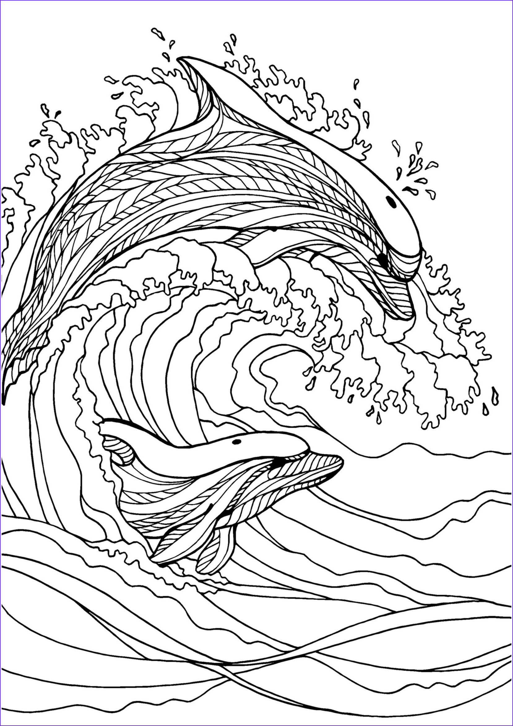 Dolphin Coloring Book New Image Dolphin Adult Colouring Page Colouring In Sheets Art