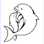 Dolphin Coloring Book Unique Images Print & Download My Experience Of Making Dolphin