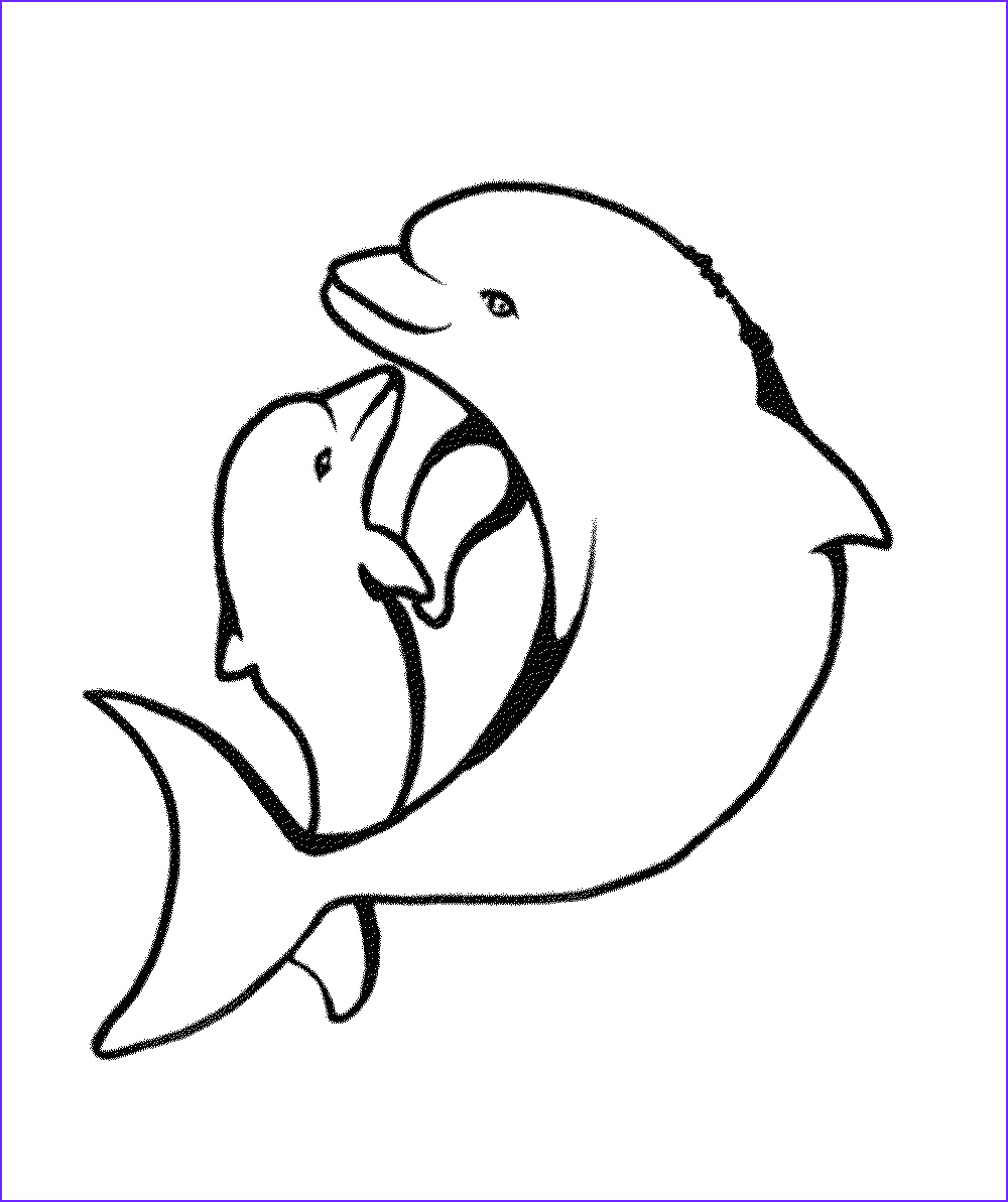 experience making dolphin coloring pages