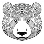 Downloadable Coloring Pages For Adults Beautiful Collection Adult Coloring Pages Animals Best Coloring Pages For Kids