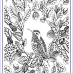 Downloadable Coloring Pages For Adults Beautiful Photos Printable Birds Coloring Pages For Adults