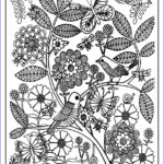 Downloadable Coloring Pages For Adults New Photography Printable Birds Coloring Pages For Adults