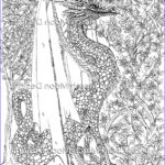 Dragon Coloring Book For Adults Elegant Photos New Dragon Adult Colouring 5 Page Pdf Booklet Now