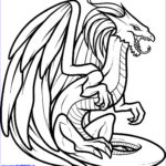 Dragon Coloring Pages Unique Collection Realistic Dragon Coloring Pages