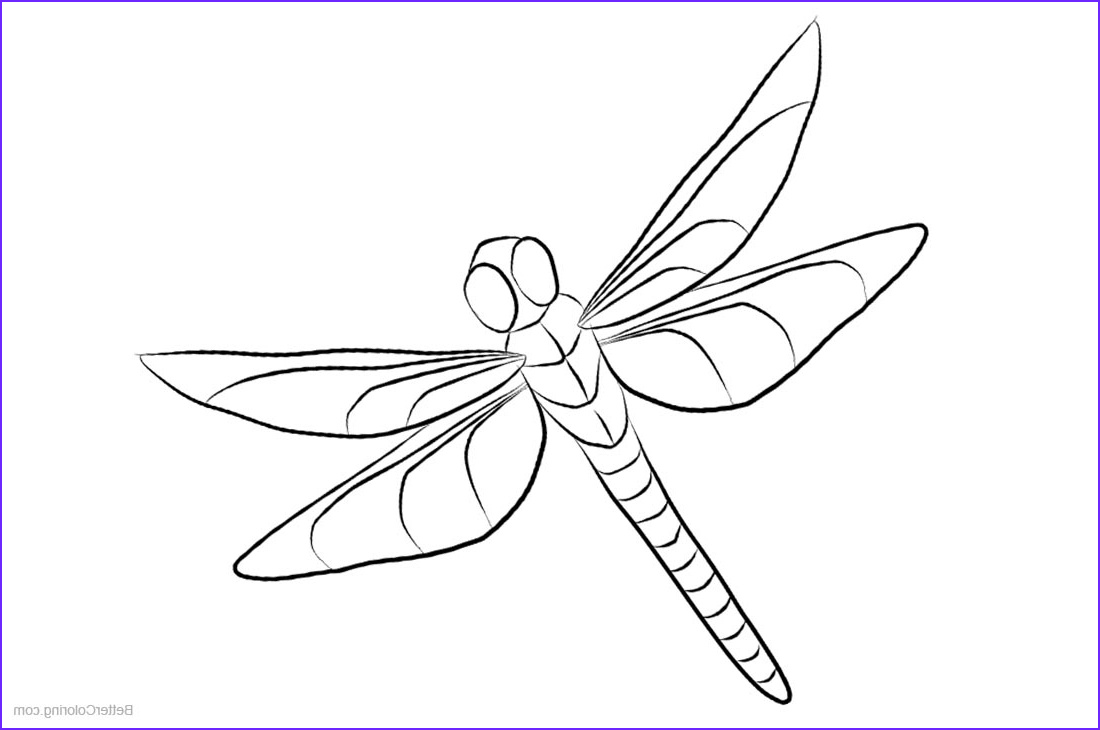 dragonfly coloring pages clipart