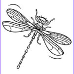 Dragon Fly Coloring Beautiful Photos Printable Dragonfly Coloring Page Free Pdf At