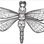 Dragon Fly Coloring Unique Stock Free Printable Dragonfly Coloring Pages For Kids