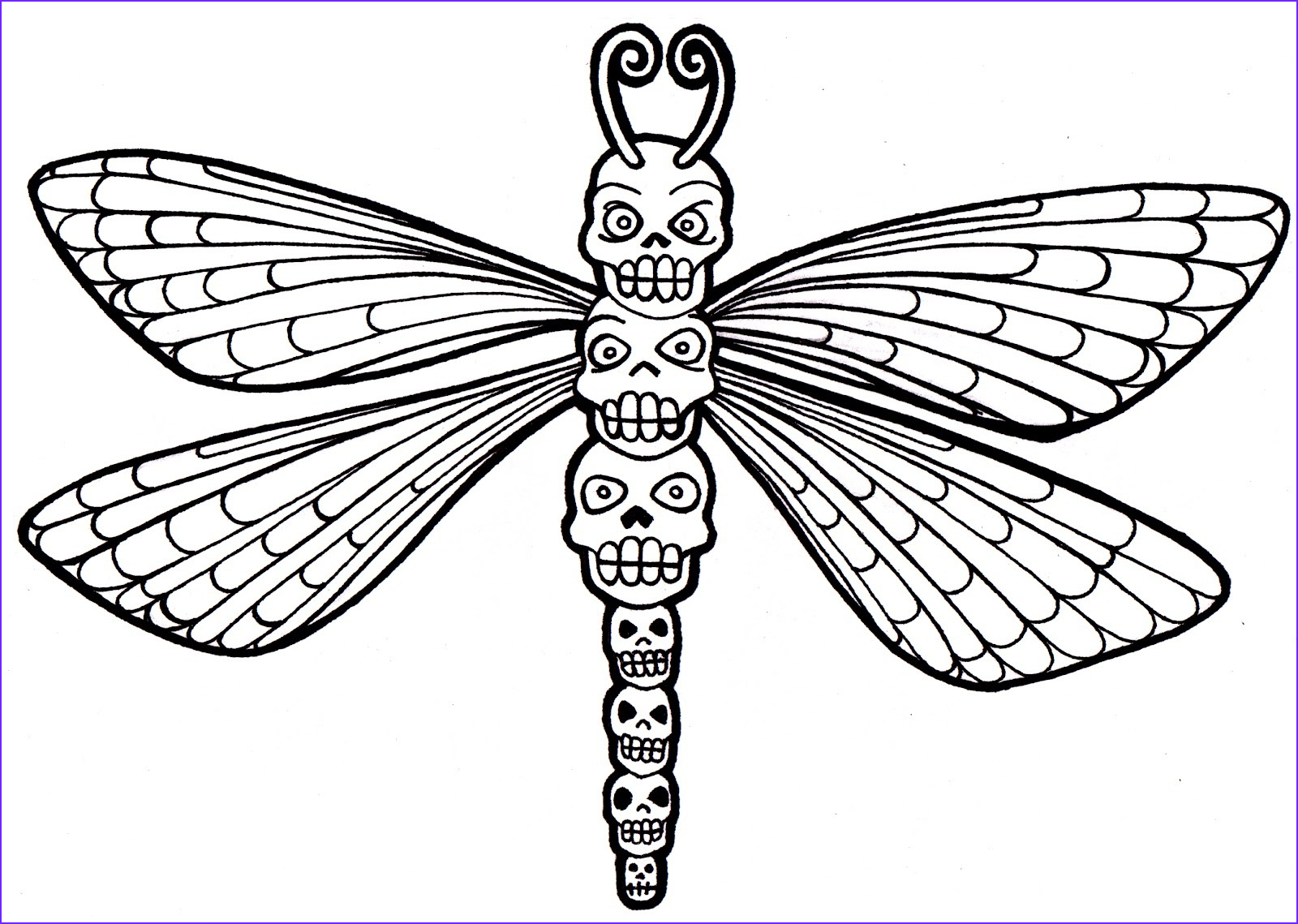 dragonfly coloring pages