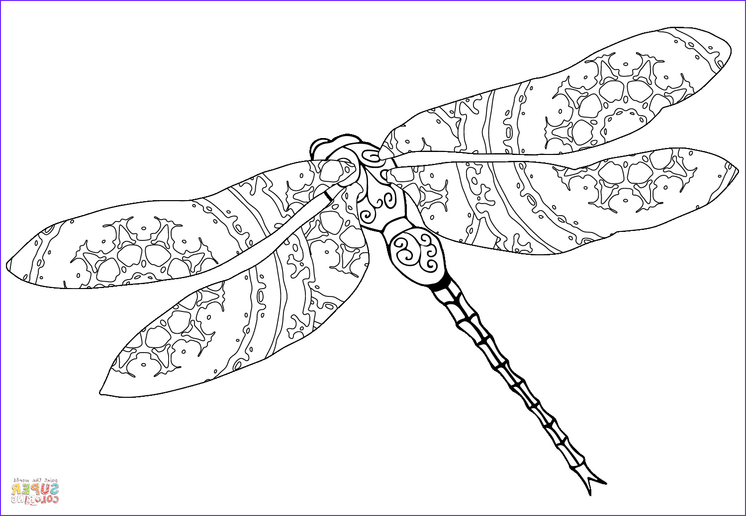 intricate dragonfly