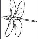 Dragonfly Coloring Best Of Photos Free Printable Dragonfly Coloring Pages For Kids