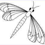 Dragonfly Coloring Cool Photos Free Printable Dragonfly Coloring Pages For Kids