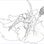 Dragonfly Coloring Inspirational Gallery Free Printable Dragonfly Coloring Pages For Kids