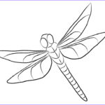 Dragonfly Coloring Luxury Stock Dragonfly Coloring Pages Clipart Free Printable Coloring