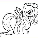 Drawing And Coloring Awesome Photos Learn Colors L How To Draw And Color Mlp Fluttershy